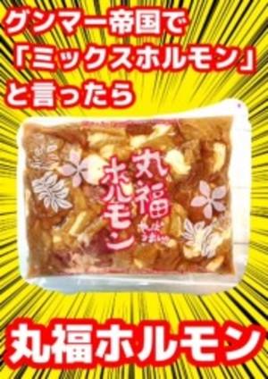 丸福ホルモン 「しょうゆ味」 300g(冷凍)